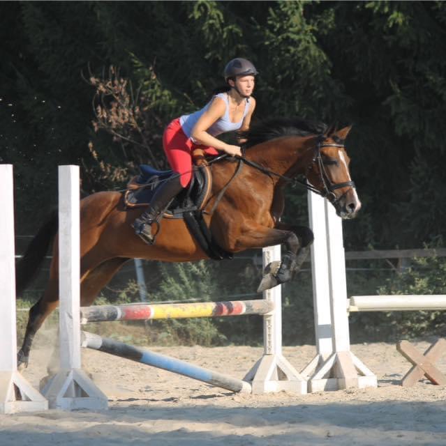 Bild könnte enthalten: 1 Person, reitet auf einem Pferd, Pferd und im Freien